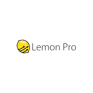 Obsługa IT firm Warszawa - LEMON PRO